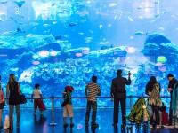 Atlantis_Waterpark_Aquaventure_and_Lost_Chamber_Combo_skylink_travel_oran_algerie.jpg