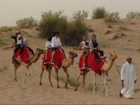 Arabian_Desert_Dunes_Safari_with_Dinner_skylink_Travel_Oran_Algerie.jpg