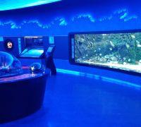Florya Aquarium - Parc d'attraction